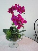 Shop Hoa  Trang Trí   - Chậu thủy tinh lan tím